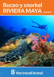 Buceo y snorkel. Riviera Maya