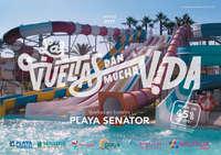 Playa senator