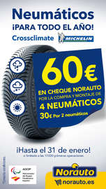 Neumáticos ¡para todo el año!